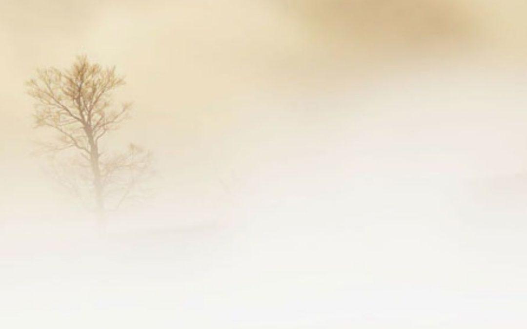 Sobre la atención | William Segal